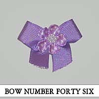 Bow Number Forty Six