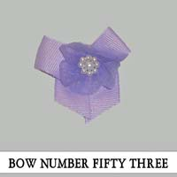 Bow Number Fifty Three