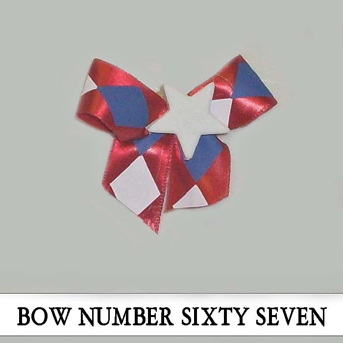 Bow Number Sixty Seven