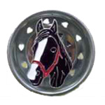 Horse Fly Sink Strainer