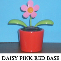 Daisy Pink Red Base