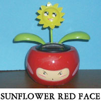 Sunflower Red Face