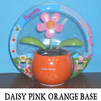 Daisy Pink Orange Base