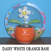Daisy White Orange Base
