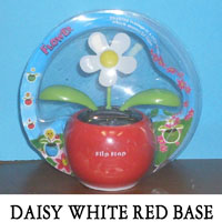 Daisy White Red Base