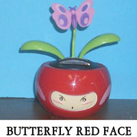 Butterfly Red Face