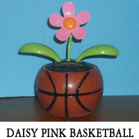 Daisy Pink Basketball
