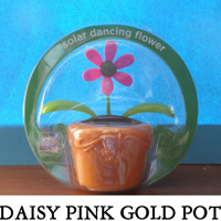 Daisy Pink Gold Pot
