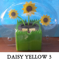 Daisy Yellow 3