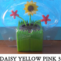Daisy Yellow Pink 3